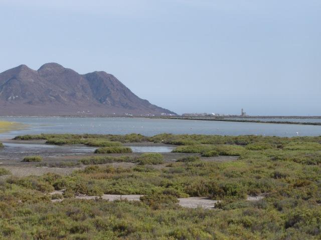 Cabo de Gata - Las Salinas © Robert Bovington