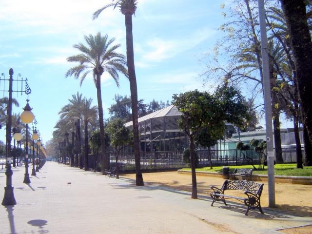 Córdoba - Paseo de la Victoria